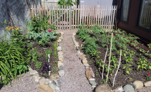 The Daystation garden is the effort of a guest who is in COTS services.