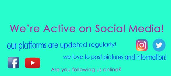 social-media-website