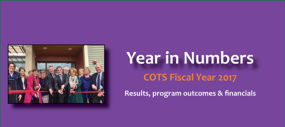 year in numbers FY17